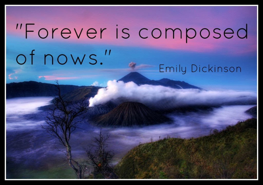 emilydickingsonforeverquote